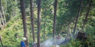 Waldbrand 4