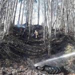 Flurbrand Edenlehen 8