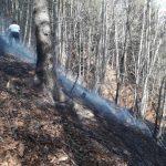 Flurbrand Edenlehen 6