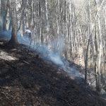 Flurbrand Edenlehen 7
