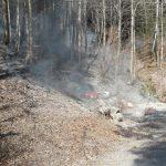 Flurbrand Edenlehen 1