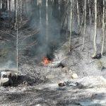 Flurbrand Edenlehen 2